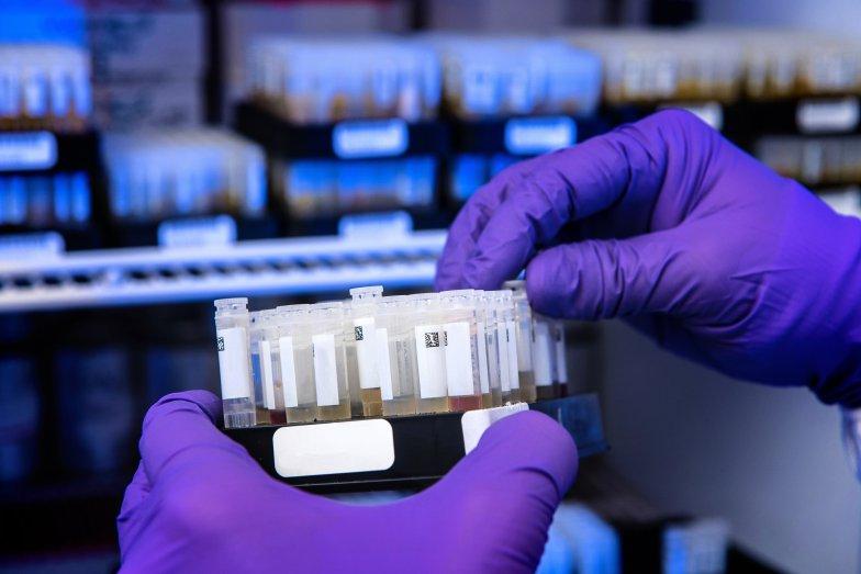 Virtuele mens helpt om sneller betere medicijnen te ontwikkelen